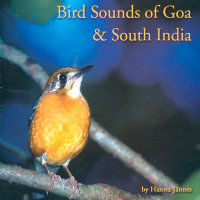 Bird Sounds Of Goa & South India