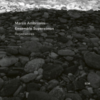 AMBROSINI, Marco / Ensemble Supersonus: Resonances