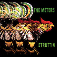 METERS, The: Struttin'
