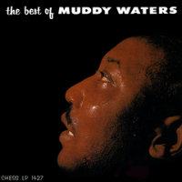 WATERS, Muddy: The Best Of Muddy Waters