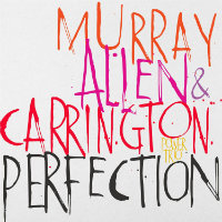 MURRAY ALLEN CARRINGTON POWER TRIO: Perfection