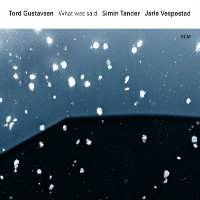 GUSTAVSEN, Tord: What Was Said