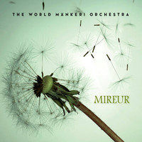 WORLD MÄNKERI ORCHESTRA, THE: Mireur